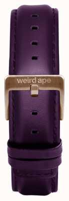 Weird Ape Couro de beringela 16mm cinta fivela de chocolate ST01-000068