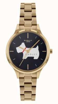 Radley Lugar Meridan | pulseira de aço dourado | mostrador azul RY4520